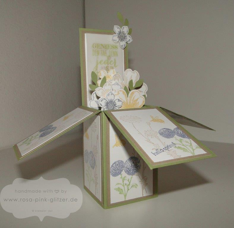Stampin up Landshut - card in a box - 3