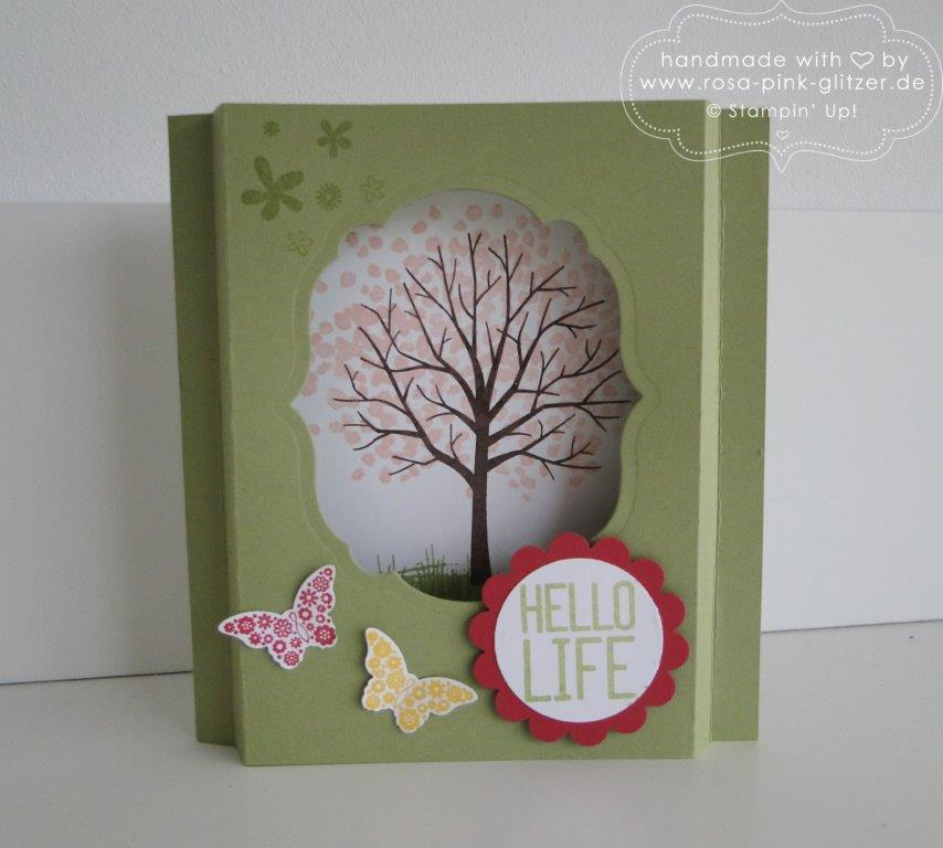 Stampin up Landshut - Workshop Tina Card-in-a-box Windowcard Dreiecksbox 2