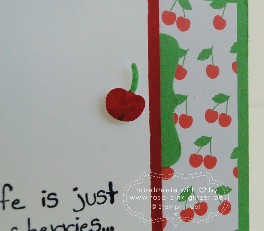 Stampin up Landshut - imc211 - Giggle Greetings Kirschen 3