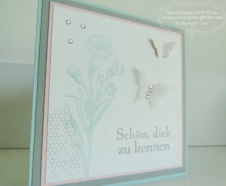 Stampin up Landshut - Schmetterlingsgruß Kinda Eclectic 2