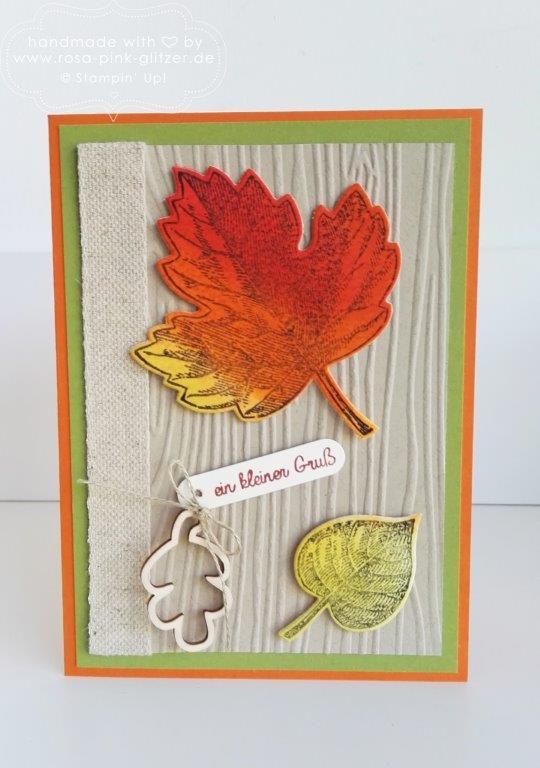Stampin up Landshut - Vintage Leaves Herbst 3