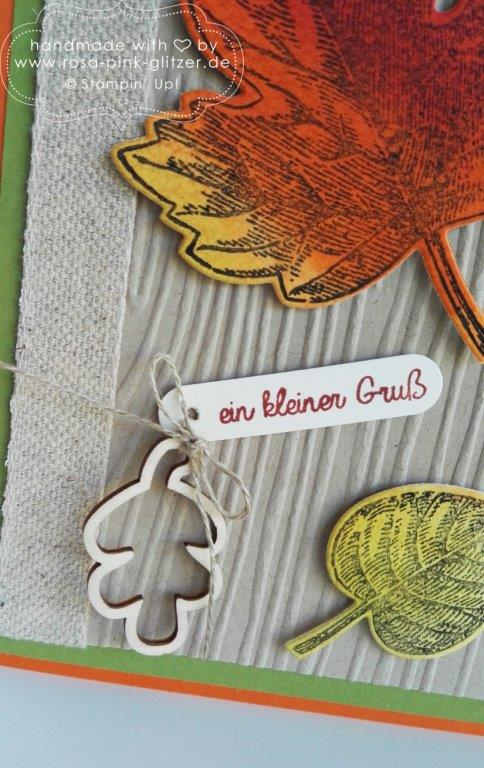 Stampin up Landshut - Vintage Leaves Herbst 5