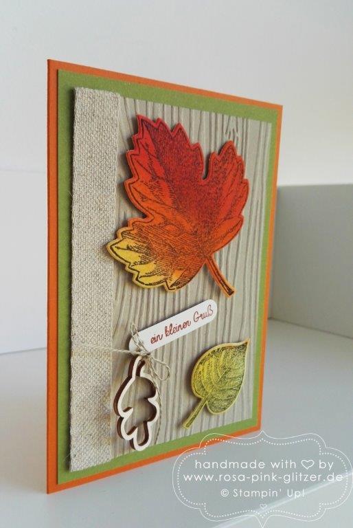 Stampin up Landshut - Vintage Leaves Herbst 6