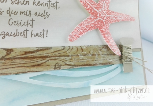 Stampin up Landshut - Picture Perfect Seestern 2