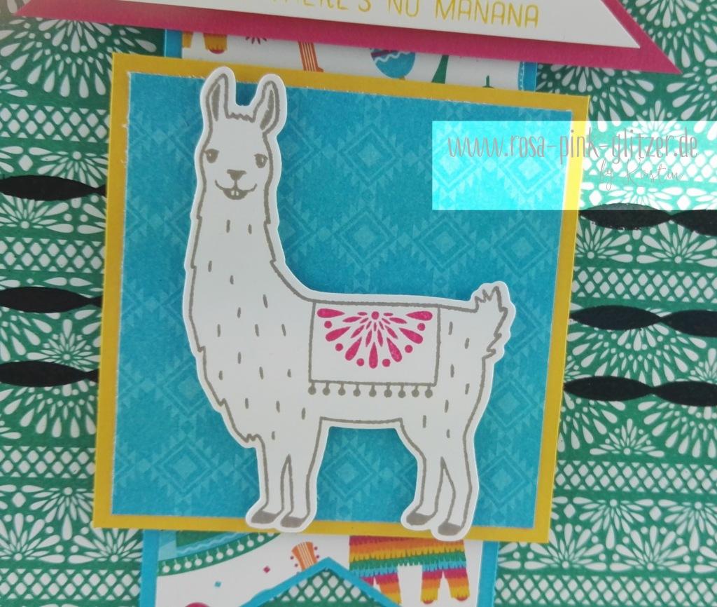 Stampin up Landsut - Fiesta Lama 3