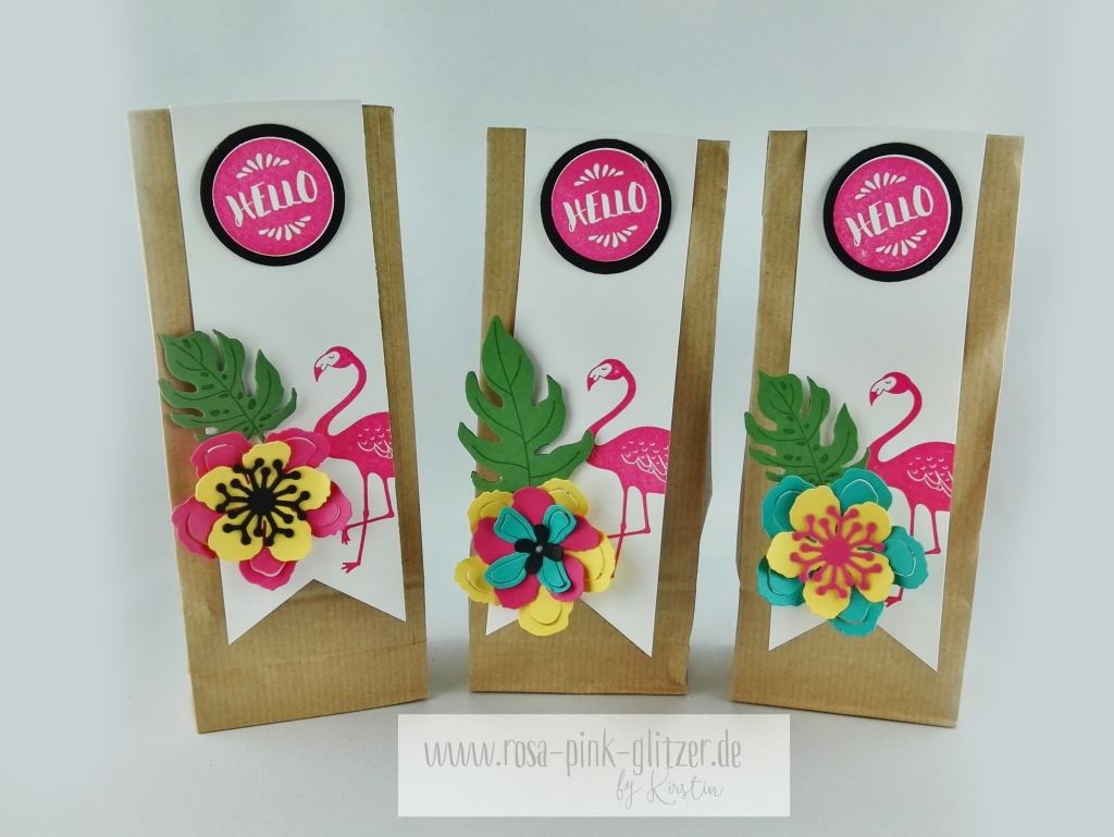 Stampin up Landshut - Pop of Paradise Teamschenklis Swaps 2