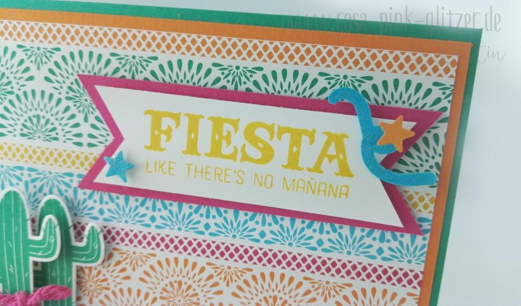 Stampin up Landshut - Birthday Fiesta Kaktus 2