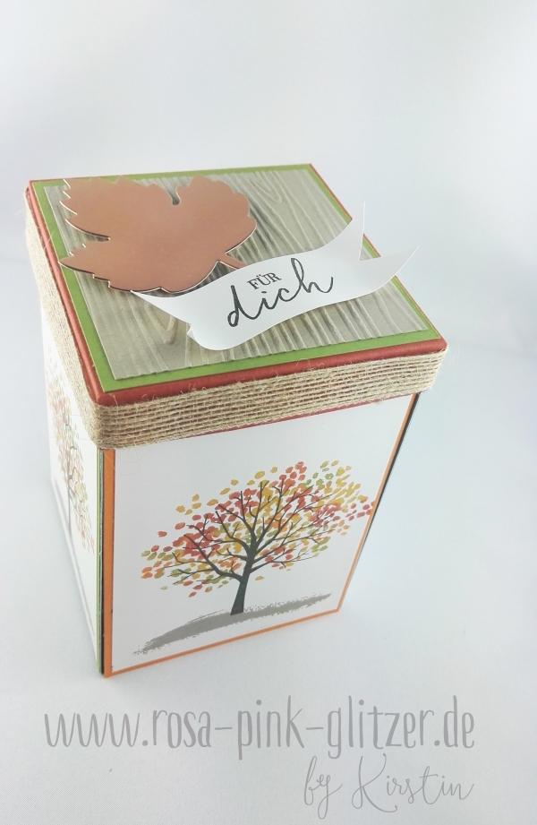 stampin-up-landshut-explosion-box-herbst-halloween-spooky-fun-1