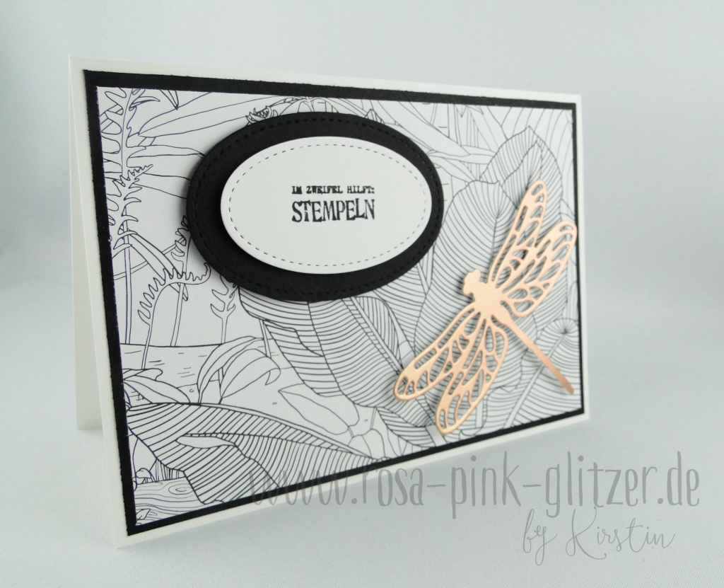 stampin-up-landshut-kreativ-koloriert-libelle-kuper-1